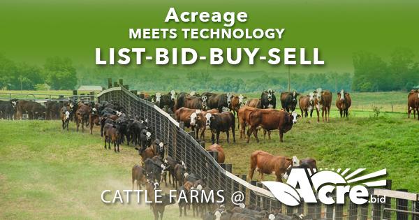 cattle farm auctions