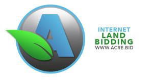 internet bidding